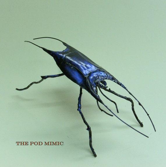 the pod mimic beetle