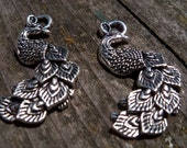 3 Silver Peacock Pendants Antiqued Silver 35mm