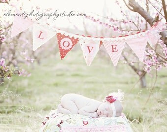 LOVE  Scalloped bunting banner