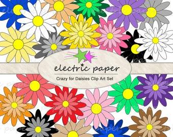 Daisy Flower clip art - 22 Daisy Clip Art Images - instant download