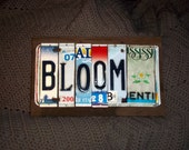 BLOOM- Folk Art License Plate Art