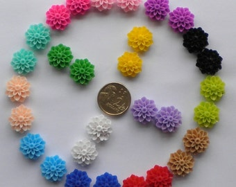 Cabochon Resin Flowers 50 Mixed Colour Retro Style - AUSTRALIA