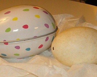 "Vintage Metal Egg Tin 5""L w Real Hollow Egg 3.75""L"