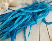 Goose Biots 1DOZ Electric Blue