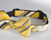 The Georgetown Bow Tie Dog Collar