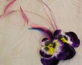 Velvet pansy fascinator with curled pink feathers for party going