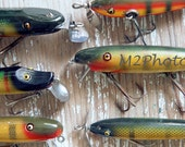 Fisherman's greetings - Antique Fishing Lure Collection - Collectibles and Curios Series - Photo note card