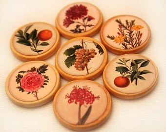 Push Pins or Magnets - Fruit & Floral 2