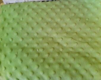 Toddler Pillow - Pastel Green