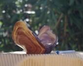 Versatile Mesquite Whatcamacallit Bowl
