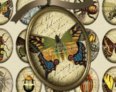 Victorian Entomology with Scrolls, Antique Script and Antique Maps - 30x40mm Oval Images - Digital Collage Sheet - Instant Download