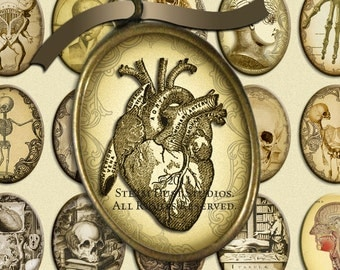 Steampunk Victorian Anatomy images - 30x40mm Cameo-Size Oval Images - Digital Collage Sheet - Instant Download
