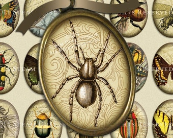 Victorian Goth Entomology with Scrolls, Antique Script and Antique Maps - 30x40mm Ovals - Digital Collage Sheet - Instant Download