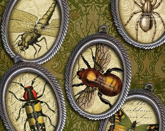 Victorian Entomology with Scrolls, Antique Script and Antique Maps - 18x25mm Oval Images - Digital Collage Sheet - Instant Download