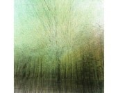 "The Breath 03 . Fine art photograph. 12"" x16"" by ILWON YOON"