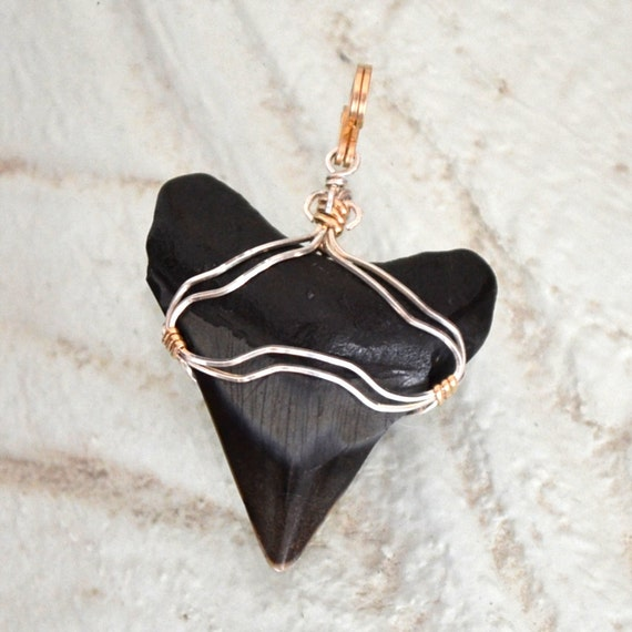 genuine Megalodon shark tooth pendant necklace. Sterling silver 14K gold filled wire wrapped.