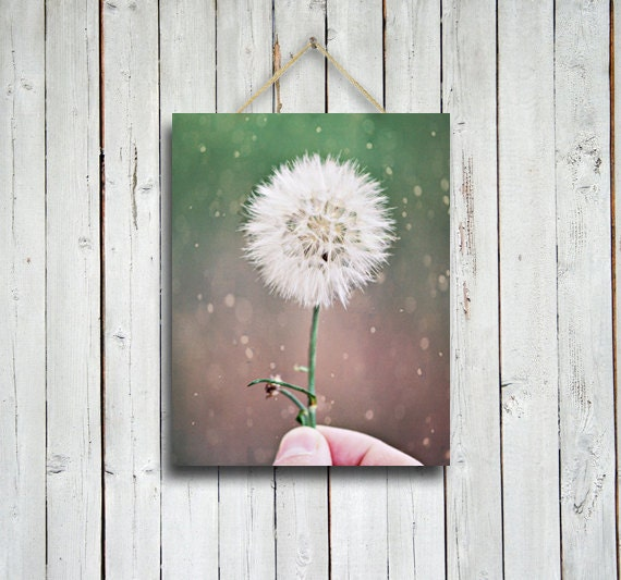 Token of Affection - 11x14 in. Canvas Print- Dandelion print -Green decor - Green home decor - Shabby chic - Love decor.
