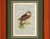 "Dictionary Art Print - Whoo Me - 6 3/4"" x 9 3/4"" - Art Print on Upcycled Dictionary Page - FRAME NOT INCLUDED"