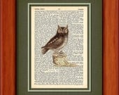 "Dictionary Art Print - Little Brown Owl - 6 3/4"" x 9 3/4"" - Art Print on Upcycled Dictionary Page - FRAME NOT INCLUDED"