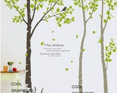 3 Birch Trees - 102 inches - Vinyl Wall Decal Sticker Art, Mural,Wall Hanging