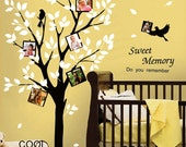 Lovely tree with picture frames -Vinyl Wall Decal Sticker Art,Wall Hanging, Mural