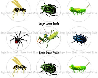 INSTANT DOWNLOAD Boys Bug Digital  1 inch Circle Bottlecap Images 4x6 sheet