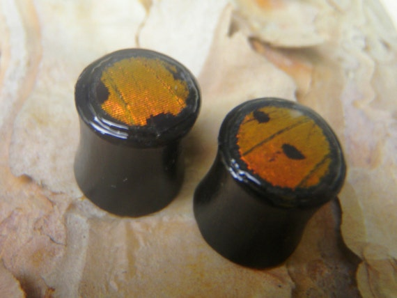 Butterfly Wing Plugs 0G Double Flare  - Sunset Moth