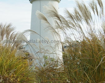Plum Island Lighthouse 5x7 photo card