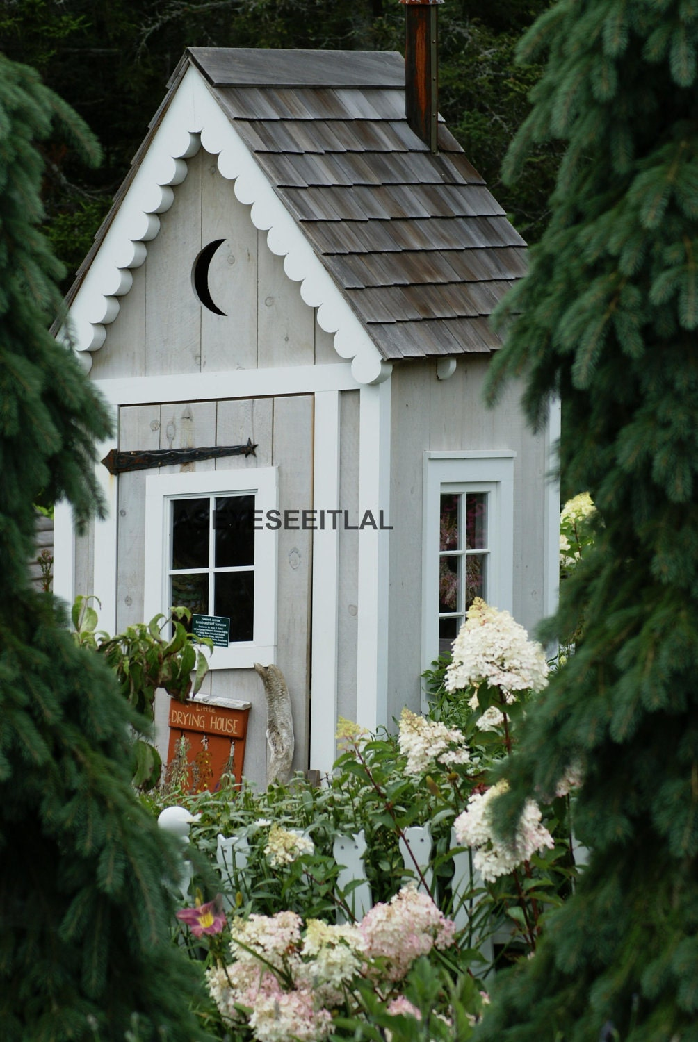 Small shed hidden in the garden 5x7 photo greeting card for Garden shed 5x7