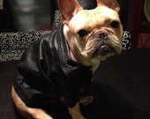 ON SALE NOW Size Small Dog/Cat Leather Jacket