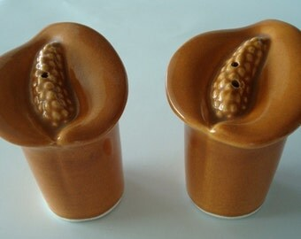 Beautiful Vintage Salt and Pepper Shakers in Fall Colors