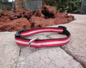 "1/2"" Width Dog Collar - Red/Pink Stripes"