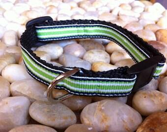 "1/2"" Width Cat Collar - Green/Navy Stripe"