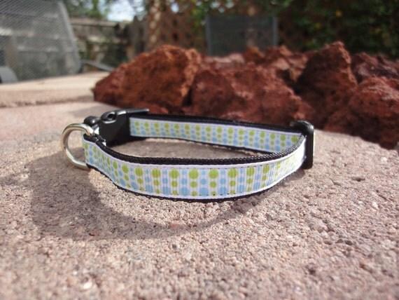 "1/2"" Width Dog Collar - Lime/Blue Dizzy Dots"