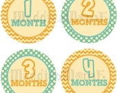 Baby Monthly Onesie Stickers - Skye - Boy or Girl Yellow Blue Turqouise