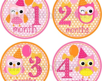 Monthly Baby Girl Stickers, Milestone Stickers, Baby Shower Gift Baby Month Stickers, Baby Month Stickers Girl Owls (Samantha Birthday)