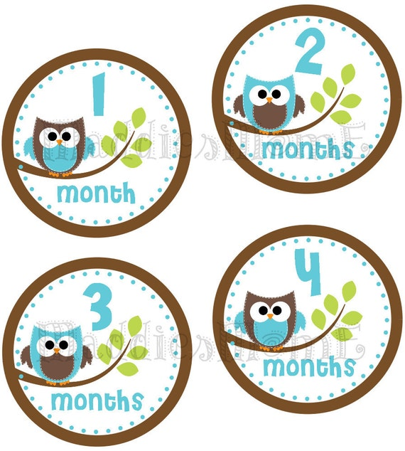 Monthly Baby Boy Stickers, Milestone Stickers, Baby Month Stickers, Monthly Bodysuit Sticker, Monthly Stickers Blue Brown Owls (Jordan)