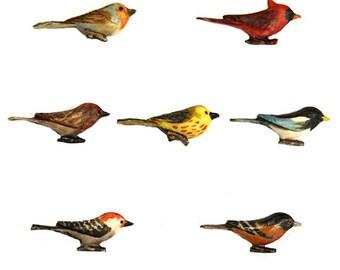 Bird Cabochon Lot of 7 Mixed Species 40mm
