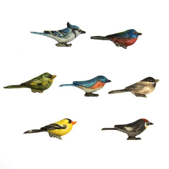 Bird Cabochons Select Species 40mm Seven