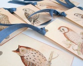 Owl tags vintage style gift tags vintage birds owl seam binding blue ribbon hang tag 100 audubon images favor bags nature theme forest theme
