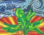 Cosmic Banana, 2010, Prismacolor (Greeting card)