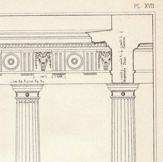 Doric Intercolumniation Architectural Drawing Vignola, Spacing Columns