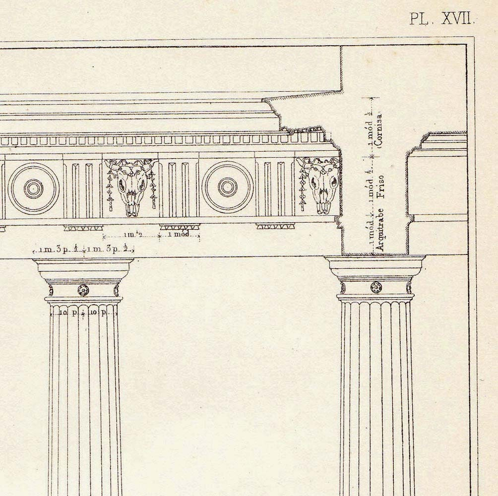 Greek Architecture Drawing Architectural Drawing Doric