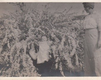Vintage/Antique photo of a cute baby surrounded by flowers