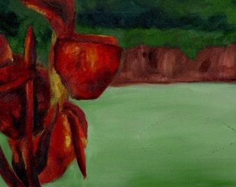 Callaway Gardens Cana Lily - 7.75 x 14.75