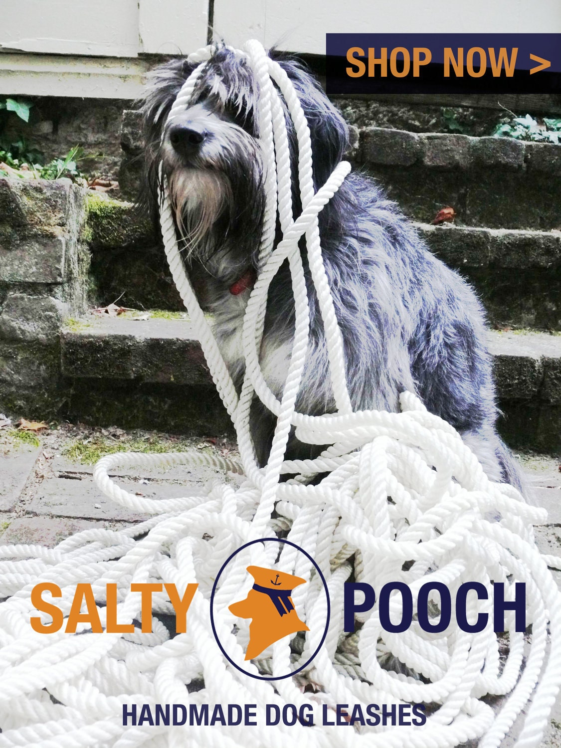 salty pooch handmade leashes