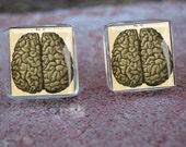 Brain anatomy Medical Weird Creepy Cool Glass Tile Post Earrings