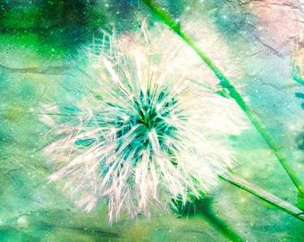 Dandelion poster, Art, Make a Wish, FIne art photography, nature, flowers, blue, green, magical, surreal, children, kids room, nursery