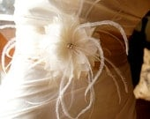 Bridal Sash Champagne with Feather Off- White Flower Pin  Wedding Accessories