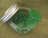 Minty leaf one use soaps